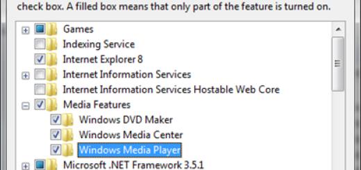 Kako da uklonite Windows Media Player i Internet Explorer ?