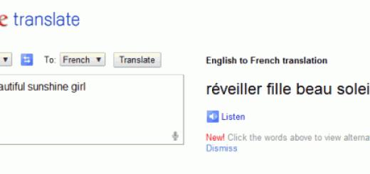 Google prevodilac vas pažljivo sluša !
