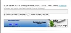 FLV u MP3 format