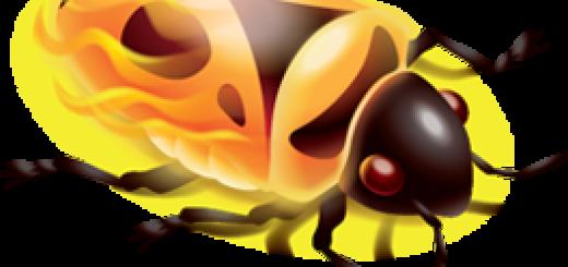 Firebug programer prešao u Chrome tim