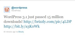 WordPress 3.1 preuzet 15 miliona puta !